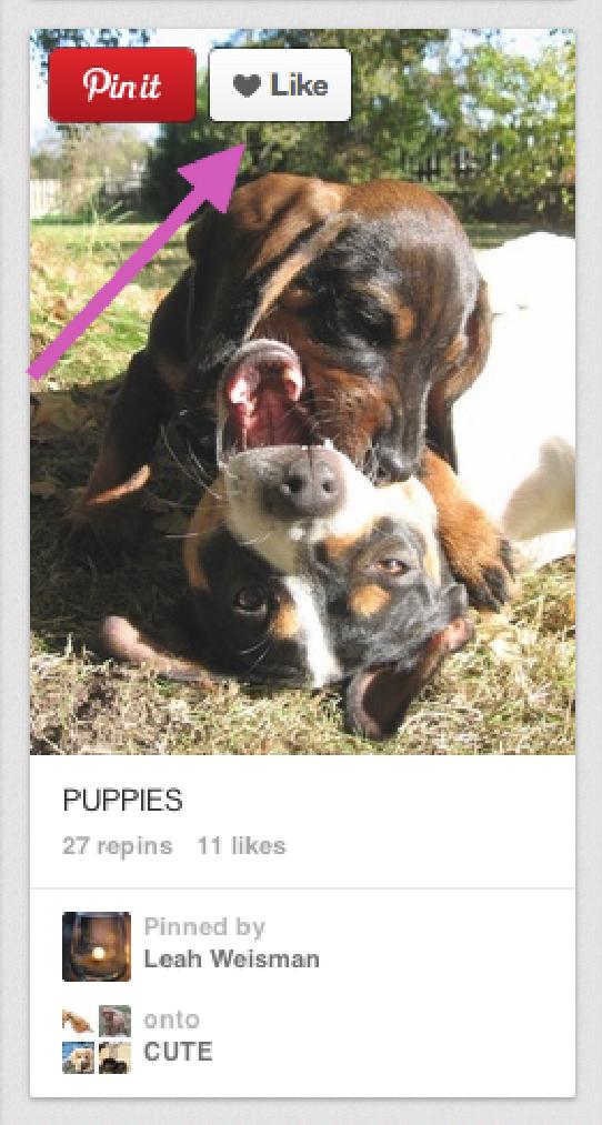 Getting more Pinterest fans